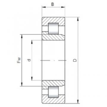 280 mm x 580 mm x 175 mm  ISO NJ2356 cylindrical roller bearings